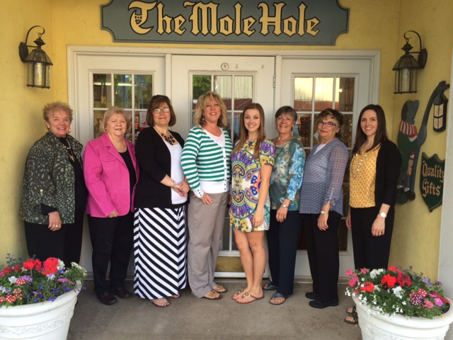 The Mole Hole History