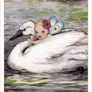 16_Swan_