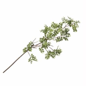 leafy stem greenery