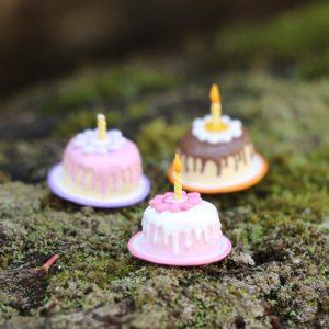 TT016 cake