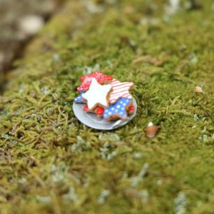 TT017 Tiny Plate of RWB Cookies